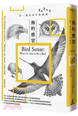 鳥的感官 : 當一隻鳥是什麼感覺?